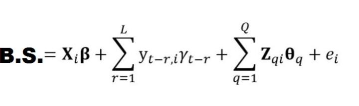 VAM Formula Fixed